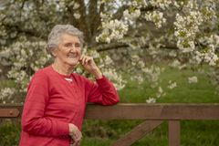 Portrait of senior woman outdoors. In spring, taken with copy space stock photography