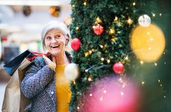 A portrait of senior woman with paper bags in shopping center at Christmas. A portrait of senior woman with paper bags in shopping center at Christmas, standing royalty free stock photo