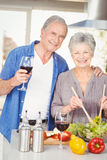 Portrait of senior woman preparing salad while man standing with red wine Royalty Free Stock Images