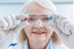 Portrait of senior woman scientist showing pills in hands Stock Images
