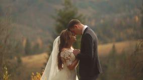 Portrait sensible en buste des couples affectueux de nouveaux mariés tenant tendrement des mains tout en souriant et se tenant tê banque de vidéos