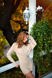 Portrait of a sensual kinky girl in tight dress in the fall prof Stock Image