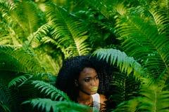 Portrait sensuel de la fille africaine magnifique tendre avec les fards à paupières verts et le rouge à lèvres regardant de côté  Image stock