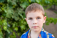 Portrait of serious 8-year-old boy Royalty Free Stock Photography