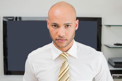 Portrait of a serious bald businessman at office Royalty Free Stock Photos