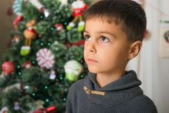 Portrait of serious boy against backdrop of Christmas tree. New. Year theme royalty free stock photography
