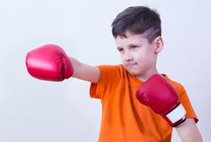 Boy with boxing gloves. Portrait of a serious caucasian boy in orange t-shirt on white background wearing red boxing gloves and performing a punch royalty free stock images