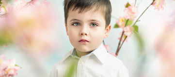 Portrait of a serious cute boy Royalty Free Stock Photography
