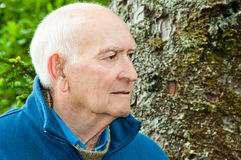 Portrait Serious Older Man. Closeup profile portrait of serious senior man with an old tree trunk in background.  Horizontal. Copy space Stock Photo