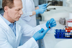 Portrait of serious scientist while looking attentively at test tube Stock Image