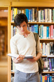 Portrait of a serious student reading a book. In a library Royalty Free Stock Photography