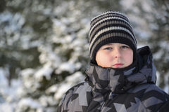 Portrait of serious teenage boy at a pine forest in winter Stock Photography