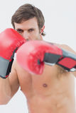 Portrait of a serious young man in red boxing gloves Stock Photography