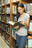 Portrait of a serious young student reading a book in a library. Beautiful female student in a university library Stock Photos