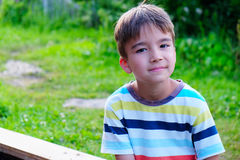 Portrait of a seven year old boy. On a background of green vegetation Stock Photography