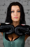 Portrait of sexy boxer girl with gloves on hands Royalty Free Stock Images