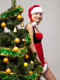 Portrait of a sexy christmas girl Royalty Free Stock Photography