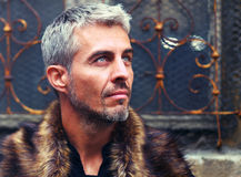 Portrait of a sexy man in wolf  fur and ornamental medieval windowPortrait of a sexy man in wolf  fur and ornamental medieval wind Royalty Free Stock Image