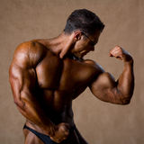 Portrait of sexy muscle man posing in studio. Royalty Free Stock Photo