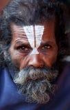 Portrait of shaiva sadhu (holy man) royalty free stock images