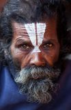 Portrait of shaiva sadhu (holy man) Stock Photos
