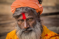 Portrait of Shaiva sadhu, holy man in Varanasi, India Stock Photo