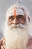 Portrait of Shaiva sadhu, holy man in Varanasi, India Stock Photo