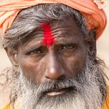 Portrait of Shaiva sadhu, holy man in Varanasi, India royalty free stock image