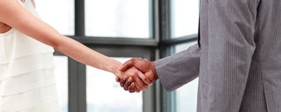 Portrait of a shaking hands Stock Image