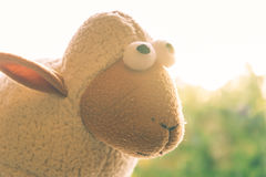 Portrait sheep doll Stock Image