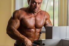 Portrait of the shirtless bodybuilder. Portrait of the shirtless body builder Royalty Free Stock Image