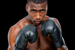 Portrait of shirtless muscular boxer in defensive stance. Portrait of a shirtless muscular boxer in defensive stance over black background Stock Images