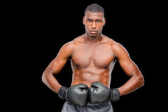 Portrait of a shirtless muscular boxer. Over black background Stock Image