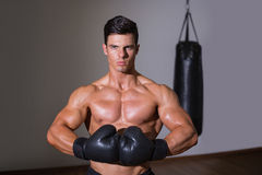 Portrait of a shirtless muscular boxer Stock Images