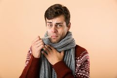 Portrait of a sick young man dressed in sweater. And scarf isolated over beige background, holding thermometer in his mouth royalty free stock photo