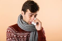 Portrait of a sick young man dressed in sweater and scarf. Isolated over beige background, holding paper tissue, sneezing stock photography