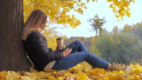 Woman Sitting Her Back To The Tree At Yellow Autumn Foliage, Uses The Phone 4k. Portrait, side view. Young cute brunette woman sits with her back to the tree on stock video