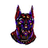 Portrait and silhouettes dog breed Doberman colorful hand drawing sketch vector illustration deaign print vector illustration