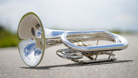 Portrait of a silver baritone Stock Images