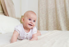 Portrait of the six month old baby indoor Stock Images