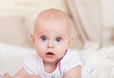 Portrait of the six month old baby indoor Stock Photography