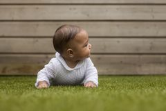 Portrait of a six months old baby girl lying on the grass in the royalty free stock images