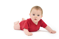Portrait of a six months old baby red Royalty Free Stock Photography