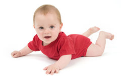 Portrait of a six months old baby red Stock Photos