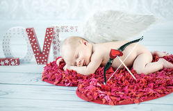 Portrait of a sleeping cupid Royalty Free Stock Image
