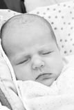 Portrait of a sleeping newborn baby Stock Photo