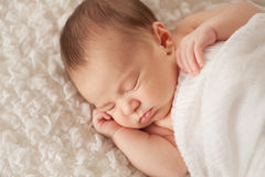Portrait of a Sleeping Newborn Baby Royalty Free Stock Photos