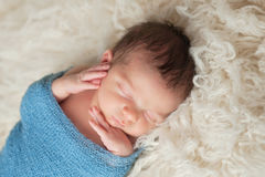 Portrait of a Sleeping Newborn Baby Boy Royalty Free Stock Images