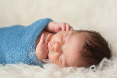 Portrait of a Sleeping Newborn Baby Boy Stock Image
