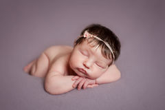 Portrait of  sleeping newborn baby girl Stock Image